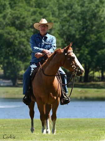 Cowboys & WESTERN