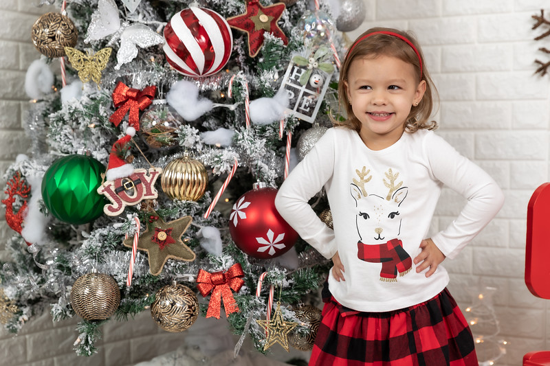 11.30.19 - Clarice's Studio Christmas Mini Session - -49.jpg