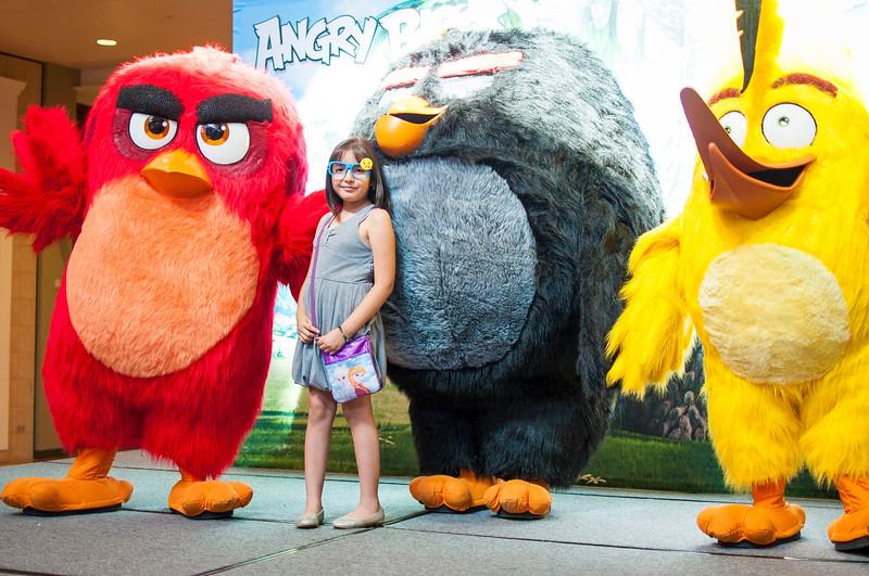 Angry Birds StoneCrest Mall 147.jpg