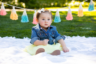 Rae's 1st Birthday Portraits