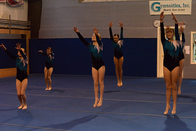 Gymnastics Meet 2015-02-08