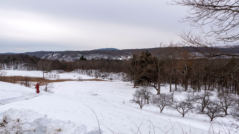 New-York-Dutchess-County-Hyde-Park-Home-of-FDR-National-Historic-Site-32.jpg