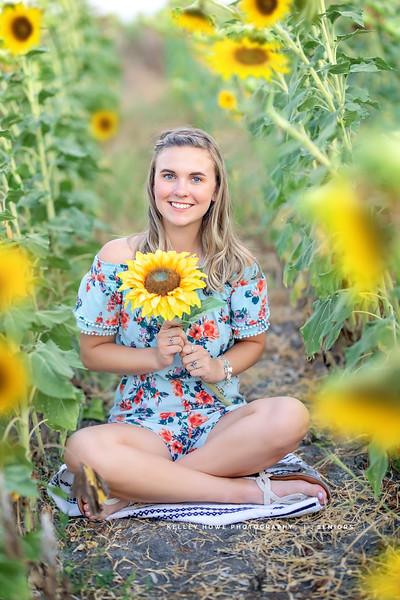 Sunflower 0954.jpg