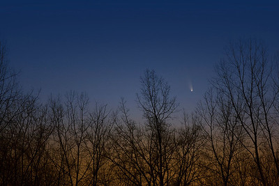 2013/03/16 Comet PAN-STARRS Rockcliffe Parkway