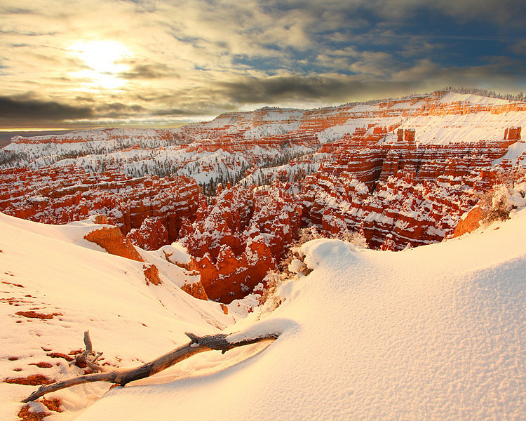 Winter Morning, Bryce Amphitheater Bryce Canyon National Park Utah