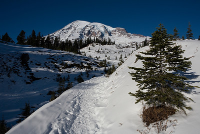 Mt Rainier 11/25/07