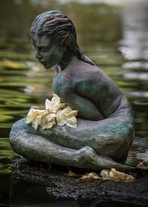 Selby Gardens, Sarasota, Florida