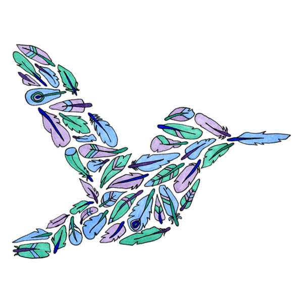 FeatherHummingbird1.png