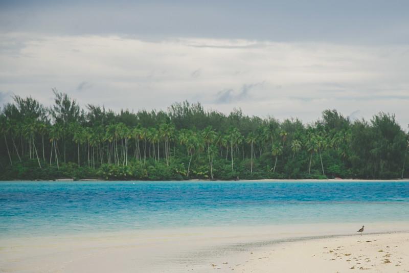 Tahiti-1.jpg