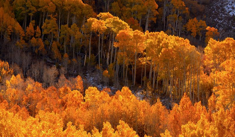 10-Astro-Landscapes-Matthew-Saville-2020-Calendar.jpg