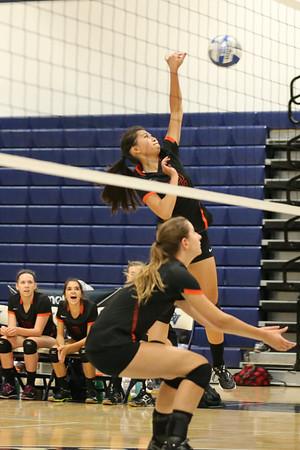 Cal High Women's Volleybal 2014