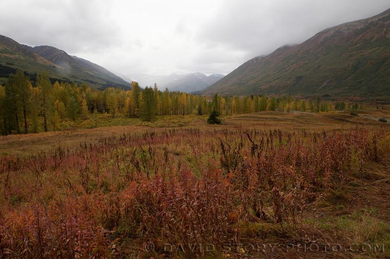 Turnagain Pass, Alaska.