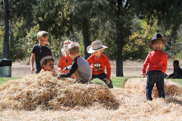 10.01.21 4MHP Harvest Festival