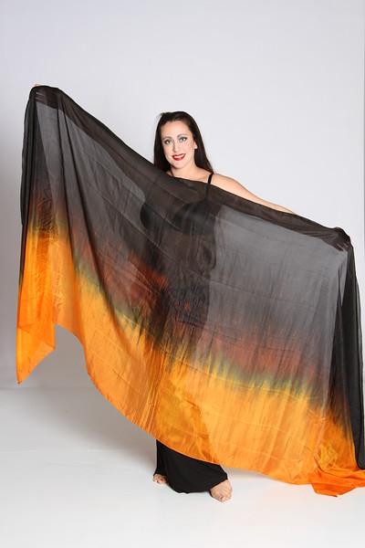$170 Set: 2 1/2 circle veils, and a rectangle 3.5 yard veil: halloween 016
