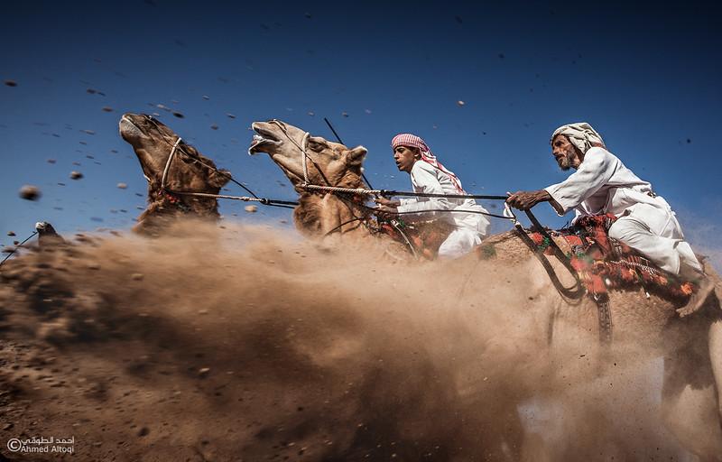 Camel Race  (46).jpg