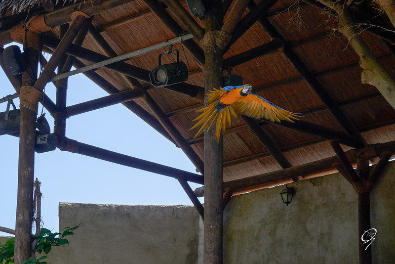 Biopark 300616W-105.jpg
