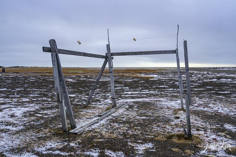 Utqiagvik-6655-Juno Kim.jpg