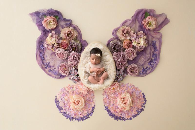 DSC9574-butterfly Newborn photographer NJ.jpg