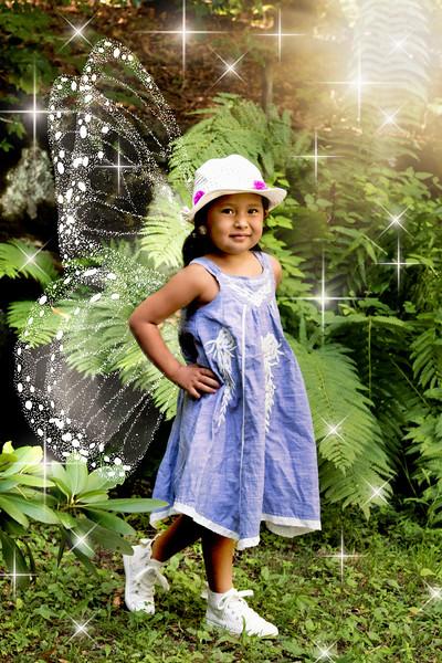 795A9819 fairy.jpg