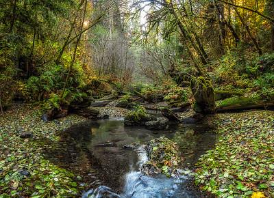 Bridge Creek