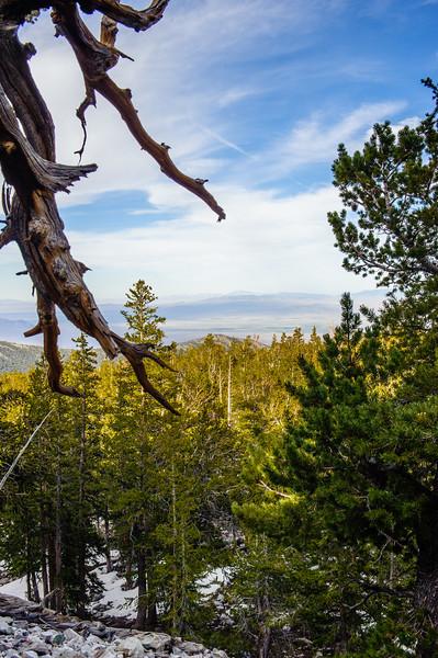 20130601-02 Great Basin 209.jpg