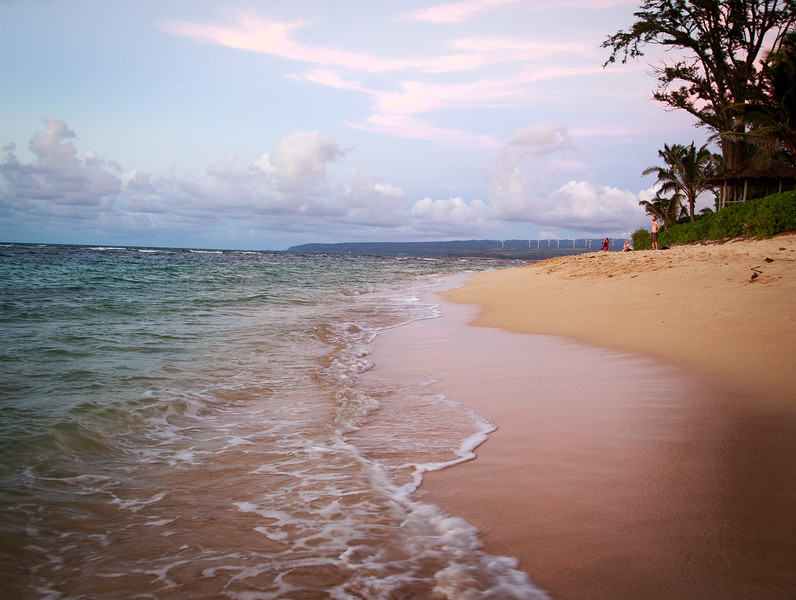 Hawaii-North Shore 2017-9411.jpg
