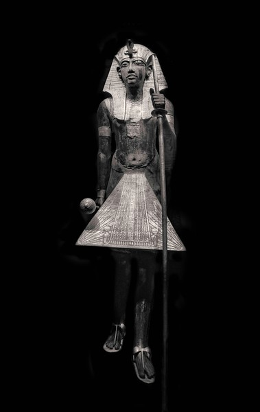 King Tut. Pharaoh Tutankhamun.