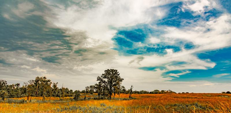 Prairie  37