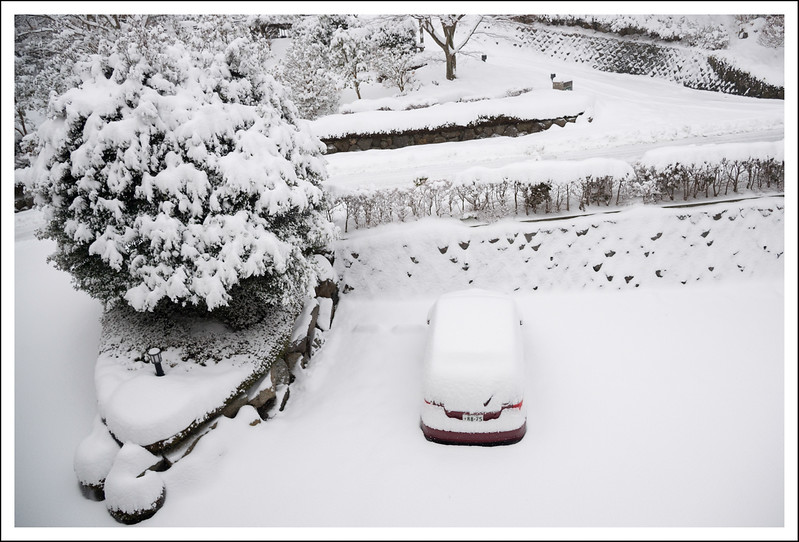 Our car, viewed from the dining room window.