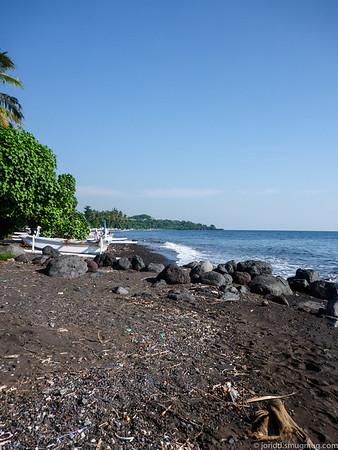 Bali Diving - 2
