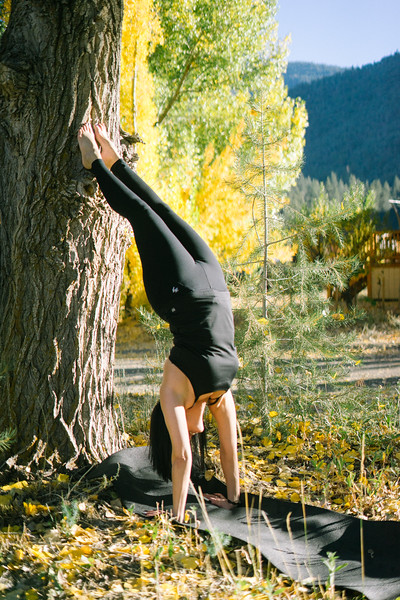 Toni Kuhn Yoga Photography Pine Mountain Club-106.jpg