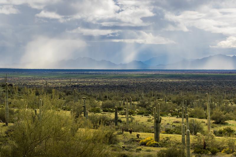 Picacho_Peak_State_Park-180491.jpg