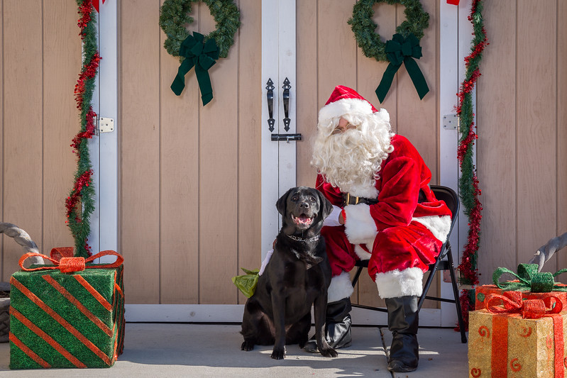 Pet Pictures With Santa-64.jpg