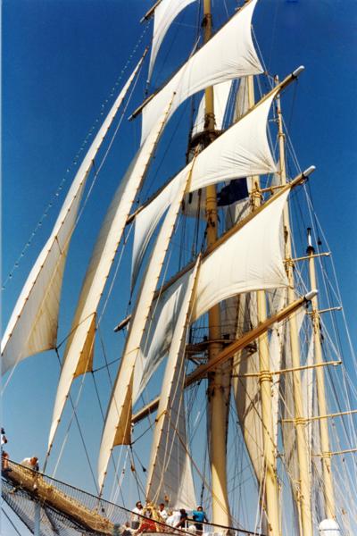 SF  at Sail 2- 1.png
