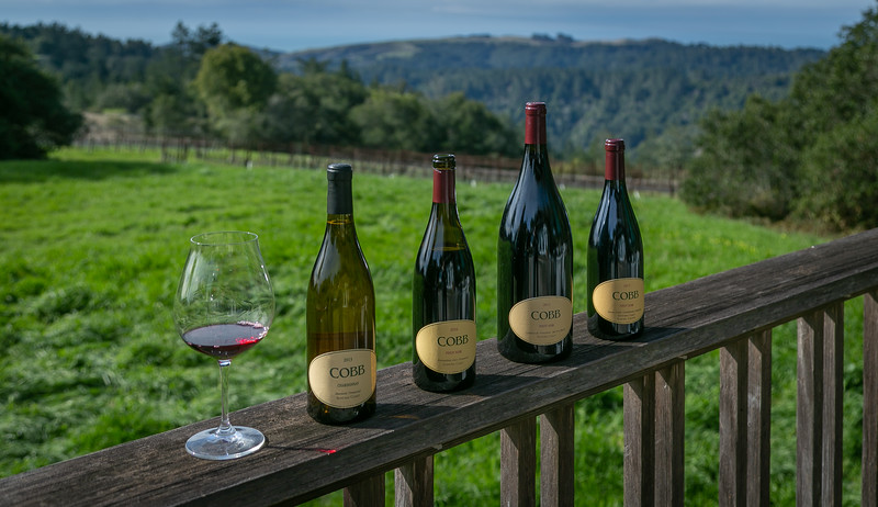 Cobb Winery-Occidental