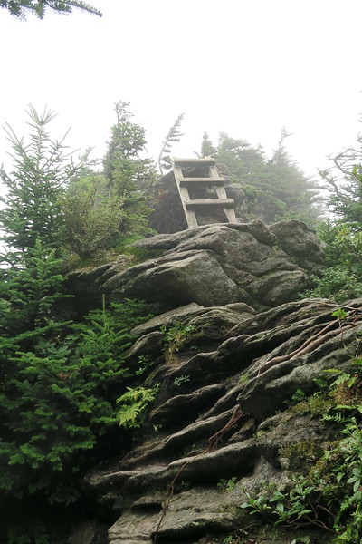Grandfather Trail -- 5,920'