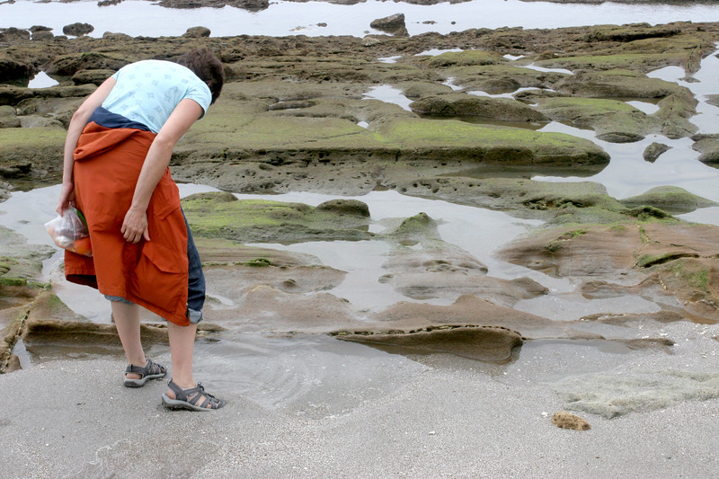 We really enjoyed exploring the tide pools along the beaches.