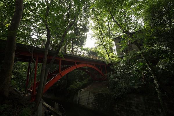 Todoroki Ravine Park