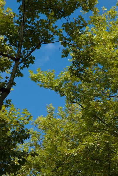 cuceron sky.jpg