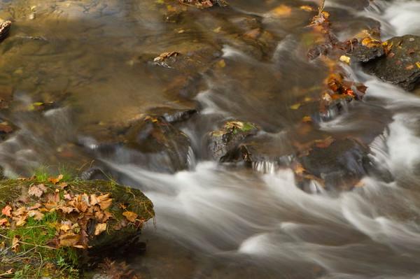 stream_iii-stephenb_33_20141019_1331074107.jpg