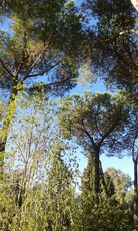 Sardegna + Estate 2015