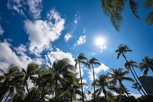 Honolulu, Hawaii 2016