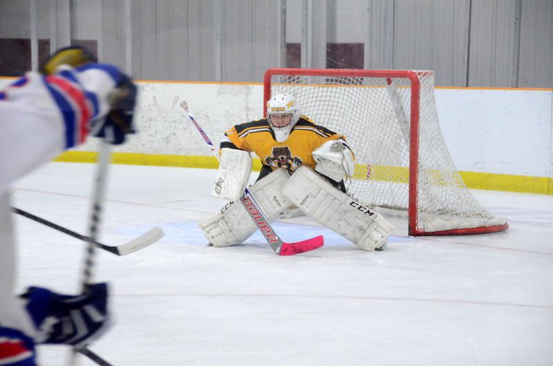 141018 Jr. Bruins vs. Boch Blazers-086.JPG