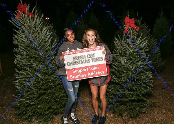 LBHS Athletics Tree Sales - Nov 30, & Dec 1, 2018