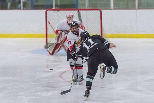Hockey 1.23.2018 Crosby Classic