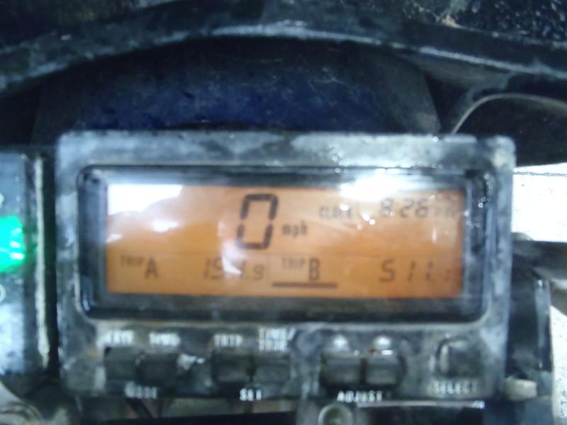 P6230067.JPG