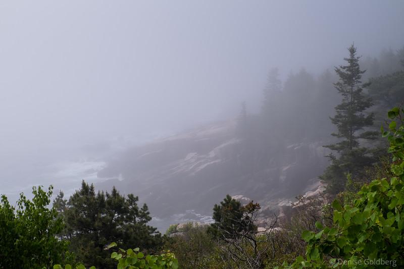 along Ocean Path