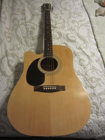 Johnson Acoustic JG 624 CN