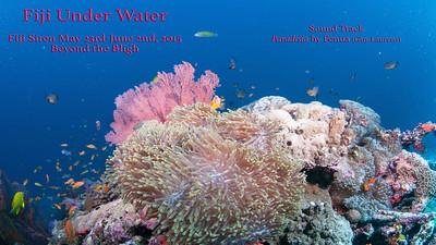 Fiji Siren 5/23-6/2-2015