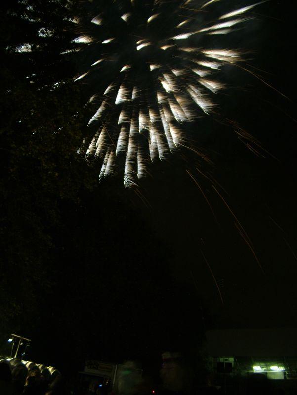 2004_1105putneyfireworks20006.JPG